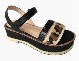 نساء [إفا] منصّة [ستربّي] أحذية نمو قنب حبل نمو أحذية