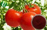 Fabrik-Zubehör-niedriger Preis-Tomate-Auszug mit Lykopen 5%-98%