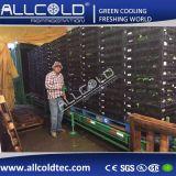 6 поддонов вакуумные машины Coolng грибов