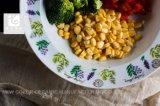 Articoli della Tabella dell'insieme di pranzo del piatto di raduno del piatto di pranzo di Cina di osso
