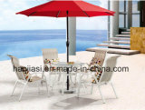 Outdoor /Rattan/Garden/Patio Furniture Texilene Cloth Flesh & Table Set (HS 2011C& HS6090ADT)