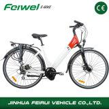 Bici elettrica della METÀ DI città del motore da vendere (TDB07Z-1)