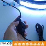 Luz de tira blanca de la tienda de campaña del ámbar 12V LED