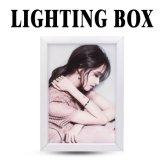 Hot Sale signe LED boîte lumineuse à LED de la publicité