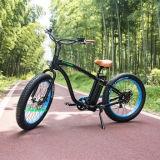 큰 타이어 고속 26 인치 뚱뚱한 E 자전거 전기 자전거
