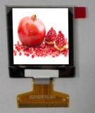 индикация Am OLED цвета 1.45-Inch с пикселами CTP и 272xrgbx340 и яркостью 350CD/M2