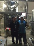 De Machine van de Verpakking van linzen voor 5-25kg Dxd-