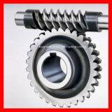 Engrenagem de sem-fim, movimentação da engrenagem eixo, roda de sem-fim