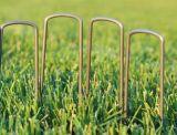 Chiodi a forma di U galvanizzati del tappeto erboso
