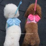 Cablaggio del cane del guinzaglio dell'animale domestico di angelo per i piccoli cani di animale domestico