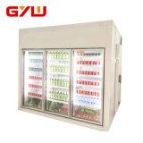Sitio para las frutas y verdura, conservación en cámara frigorífica de conservación en cámara frigorífica de las legumbres de fruta