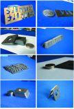 Macchina per il taglio di metalli di CNC della sfera di Ezletter della trasmissione doppia della vite (GL2040)
