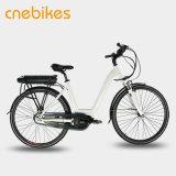 700c 바퀴 E 자전거 펼쳐지는 중앙 모터 도시 자전거 전기 자전거