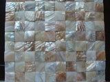 طبيعة لون [فرش وتر] قشرة قذيفة 30*30 فسيفساء