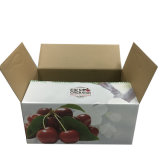 Caixa de cartão branca do vegetal e da fruta