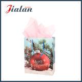 Штейновым напечатанный слоением дешевый мешок промотирования рождества упаковки подарка