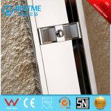 Puerta de la ducha de 304 puertas deslizantes del acero inoxidable dos (A1002)