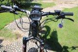 2017 [هيغر بوور] كثّ مكشوف كهربائيّة درّاجة ناريّة [3000و] ثلج دهن درّاجة