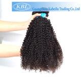 Vierge 100 % Kinky mongol brésilien les Cheveux Bouclés