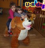 A criança do cão do luxuoso monta brinquedos para miúdos