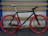 700c 인종 자전거