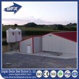 Diseño automático prefabricado acero ligero de la casa de parrilla del pollo de la granja avícola