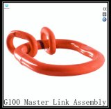 Gyr014 G100のマスターリンクアセンブリ