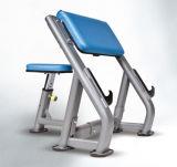 O equipamento Certificated da aptidão da ginástica/assentou a onda do braço (SS27)