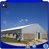 Casa de galinha pré-fabricada da construção de aço para a venda