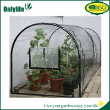 Túnel de filme plástica de Onlylife Green House for Vegetable Growing