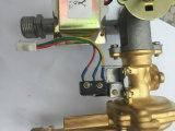 Boothroom 최신 인기 상품 가스 온수기 (JZW-006)