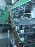 Nivel de 201 Panel de acero inoxidable pulido calentador de agua de gas (JZW-010)