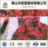 Foshan Cina 10 anni di garanzia 8mm dello strato solido trasparente del policarbonato di strato impermeabile del PC