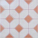 De ceramische Vloer betegelt 300X300mm