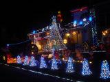 Indicatore luminoso della stringa di cerimonia nuziale del partito del LED per la decorazione di festa di festival