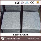 Azulejos de granito cristalino gris claro de Bianco / pavimentación del granito / pavimentador de piedra