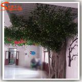 Décoration maison plastique usine artificiel Ficus Banyan Tree