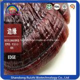 Garantie de qualité Ganoderma Lucidum Wholesale