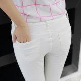 De Jeans van de acrylDame van het Denim van het Potlood met Rek
