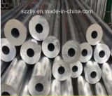 6063t5/T6 uitgedreven Aluminium/Aluminium om Buis
