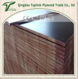 Núcleo Shuttering 1220*2440mm do Poplar da madeira compensada do molde