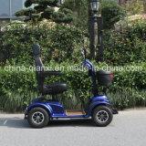 Scooters eléctricos para adultos con Ce