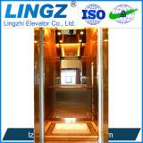 중국 공장에서 호화스러운 가정 엘리베이터