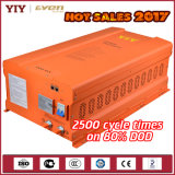EbikeのスクーターUPSのためのLiFePO4電池(12V 24V 36V 48V)