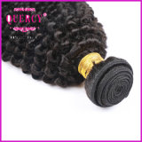 La qualité d'usine de cheveu a garanti les cheveux humains d'enroulement crépu de Remy de Vierge d'être humain de 100%