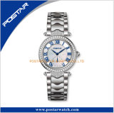 New Arriveal! Ladies All Atainless Steel Watch avec cadran Mop
