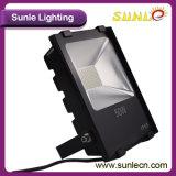 50 와트 LED 플러드 빛 LED 외부 플러드 빛