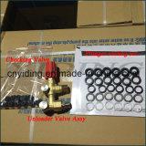250 bar 18,1 L/min de la bomba de pistón de alta presión Triplex (YDP-1024)