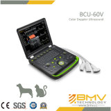 Doppler-medizinisches Ultraschall-System (Bcu60) färben