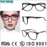De hete Verkopende Frames van de Glazen Eyewear van de Frames van de Lage Prijs Optische Buitensporige